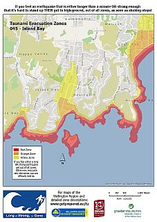 Island Bay tsunami zones - click to enlarge.